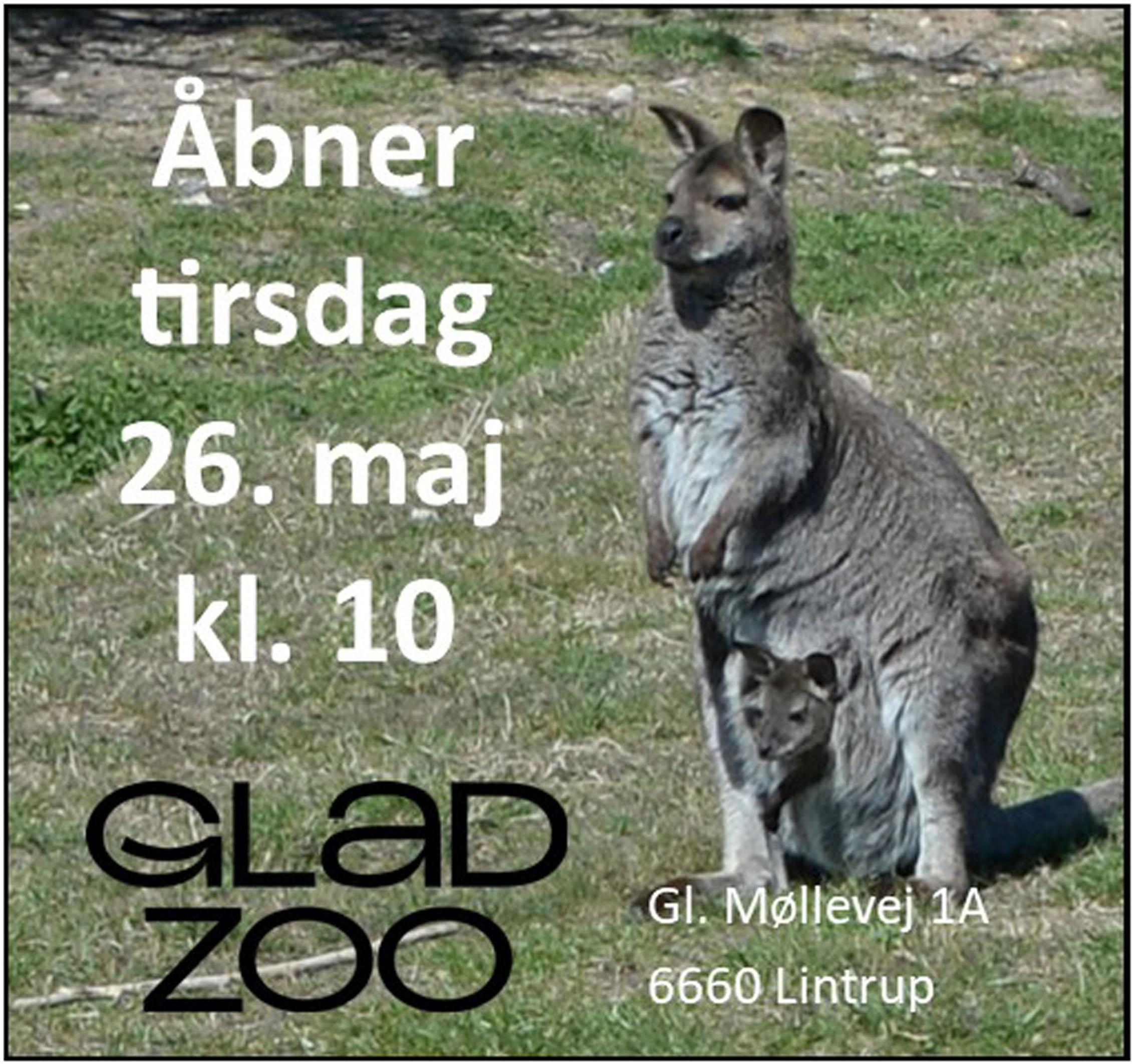 Glad Zoo - åbner 2020